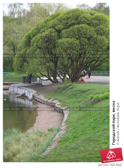 Купить «Городской парк, весна», фото № 101022, снято 8 мая 2007 г. (c) Astroid / Фотобанк Лори