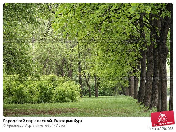 Городской парк весной, Екатеринбург, фото № 296078, снято 23 мая 2008 г. (c) Архипова Мария / Фотобанк Лори
