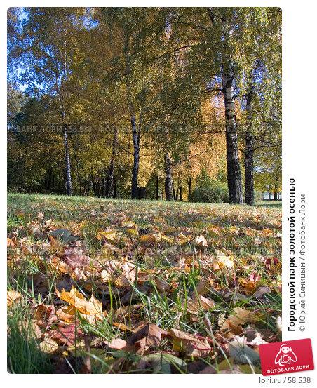 Купить «Городской парк золотой осенью», фото № 58538, снято 16 октября 2004 г. (c) Юрий Синицын / Фотобанк Лори