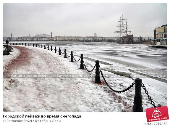 Городской пейзаж во время снегопада, фото № 219150, снято 7 февраля 2008 г. (c) Parmenov Pavel / Фотобанк Лори