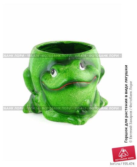 Горшок для растения в виде лягушки, эксклюзивное фото № 155474, снято 20 декабря 2007 г. (c) Евгений Захаров / Фотобанк Лори