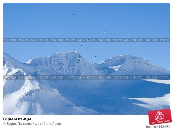 Горы и птицы, фото № 162930, снято 15 декабря 2007 г. (c) Борис Панасюк / Фотобанк Лори