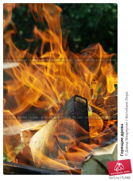 Купить «Горящие дрова», фото № 5046, снято 25 июня 2006 г. (c) Давид Мзареулян / Фотобанк Лори