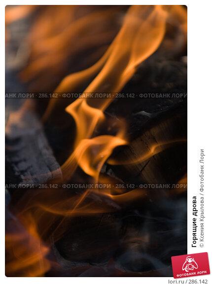 Горящие дрова, фото № 286142, снято 3 мая 2008 г. (c) Ксения Крылова / Фотобанк Лори