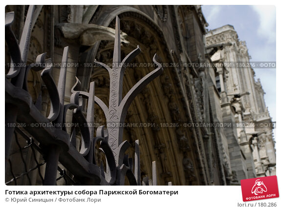 Готика архитектуры собора Парижской Богоматери, фото № 180286, снято 18 июня 2007 г. (c) Юрий Синицын / Фотобанк Лори