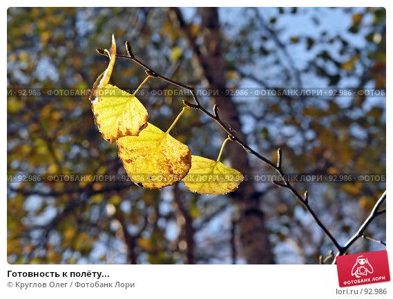 Готовность к полёту..., фото № 92986, снято 28 сентября 2007 г. (c) Круглов Олег / Фотобанк Лори