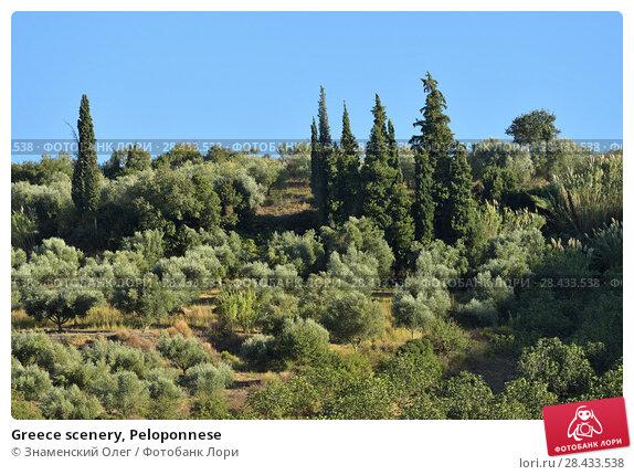 Купить «Greece scenery, Peloponnese», фото № 28433538, снято 2 октября 2013 г. (c) Знаменский Олег / Фотобанк Лори