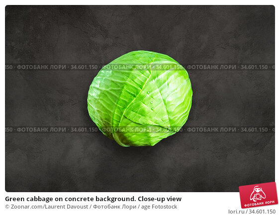 Green cabbage on concrete background. Close-up view. Стоковое фото, фотограф Zoonar.com/Laurent Davoust / age Fotostock / Фотобанк Лори