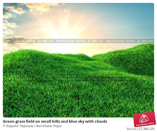 Купить «Green grass field on small hills and blue sky with clouds», иллюстрация № 27386270 (c) Кирилл Черезов / Фотобанк Лори