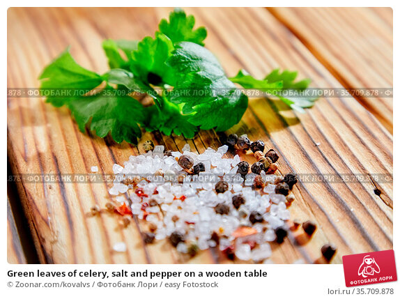 Green leaves of celery, salt and pepper on a wooden table. Стоковое фото, фотограф Zoonar.com/kovalvs / easy Fotostock / Фотобанк Лори