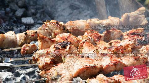Купить «Grilled appetizing kebab cooking on metal skewers», видеоролик № 30206890, снято 22 августа 2019 г. (c) FotograFF / Фотобанк Лори