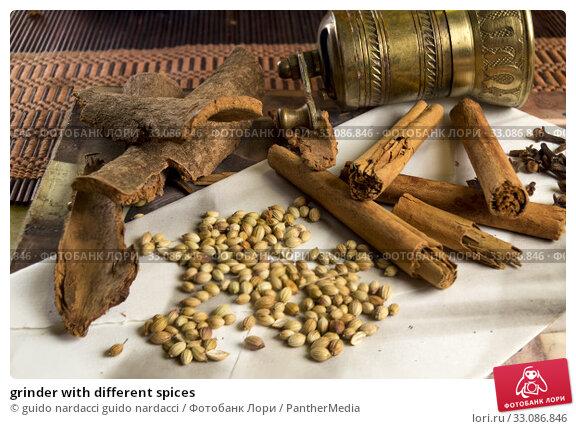 Купить «grinder with different spices», фото № 33086846, снято 18 февраля 2020 г. (c) PantherMedia / Фотобанк Лори
