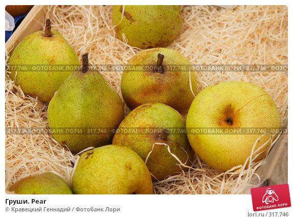 Купить «Груши. Pear», фото № 317746, снято 24 марта 2004 г. (c) Кравецкий Геннадий / Фотобанк Лори