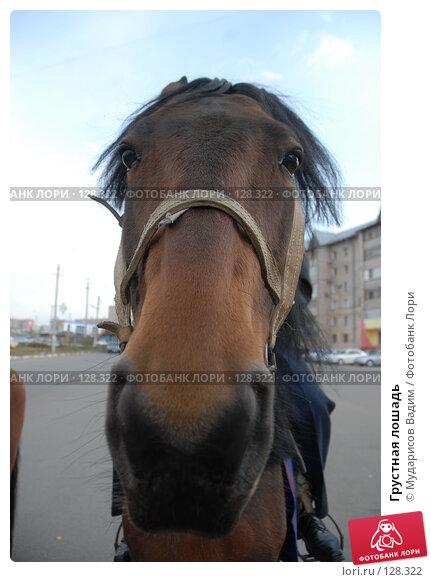 Грустная лошадь, фото № 128322, снято 17 октября 2007 г. (c) Мударисов Вадим / Фотобанк Лори