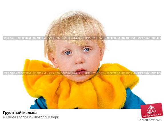 Грустный малыш, фото № 293526, снято 14 апреля 2008 г. (c) Ольга Сапегина / Фотобанк Лори