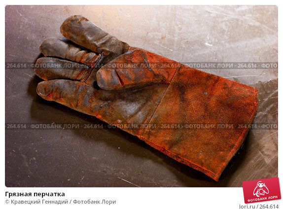 Грязная перчатка, фото № 264614, снято 8 октября 2005 г. (c) Кравецкий Геннадий / Фотобанк Лори