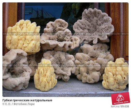 Губки греческие натуральные, фото № 69638, снято 1 августа 2007 г. (c) Екатерина Овсянникова / Фотобанк Лори