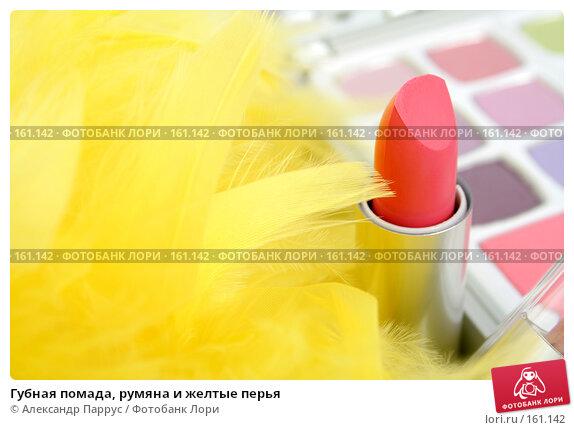 Купить «Губная помада, румяна и желтые перья», фото № 161142, снято 25 июня 2007 г. (c) Александр Паррус / Фотобанк Лори