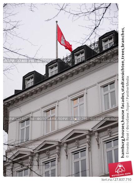 Купить «hamburg,houses,house facades,stadtansichten,trees,branches,», фото № 27837710, снято 22 февраля 2018 г. (c) PantherMedia / Фотобанк Лори