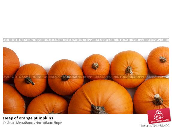 Heap of orange pumpkins. Стоковое фото, фотограф Иван Михайлов / Фотобанк Лори
