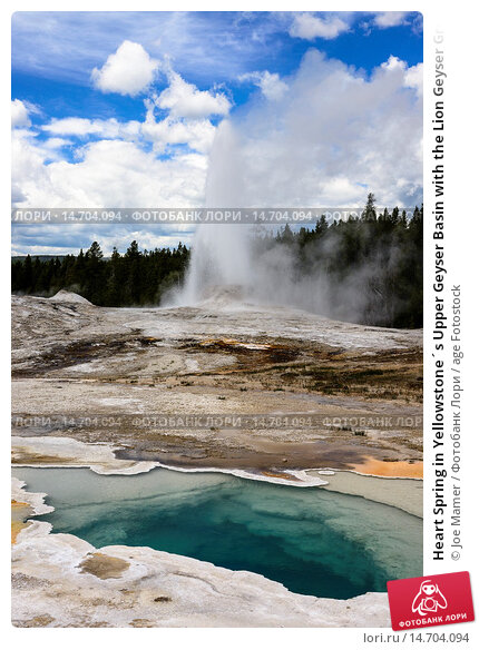 Купить «Heart Spring in Yellowstone´s Upper Geyser Basin with the Lion Geyser Group erupting in the background.», фото № 14704094, снято 22 февраля 2019 г. (c) age Fotostock / Фотобанк Лори