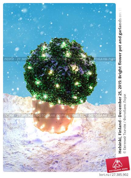 Купить «Helsinki, Finland - December 25, 2015: Bright flower pot and garlands on the night street», фото № 27385902, снято 25 декабря 2015 г. (c) Евгений Ткачёв / Фотобанк Лори