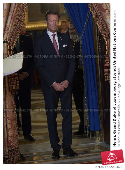 Купить «Henri, Grand Duke of Luxembourg attends United Nations Conference on Climate Change (COP25) reception at Royal Palace on December 2, 2019 in Madrid, Spain», фото № 32542670, снято 2 декабря 2019 г. (c) age Fotostock / Фотобанк Лори