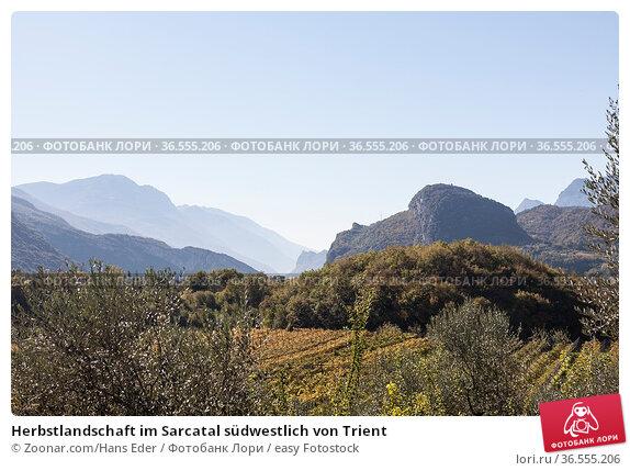 Herbstlandschaft im Sarcatal südwestlich von Trient. Стоковое фото, фотограф Zoonar.com/Hans Eder / easy Fotostock / Фотобанк Лори