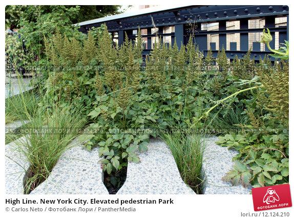 Купить «High Line. New York City. Elevated pedestrian Park», фото № 12124210, снято 14 февраля 2019 г. (c) PantherMedia / Фотобанк Лори