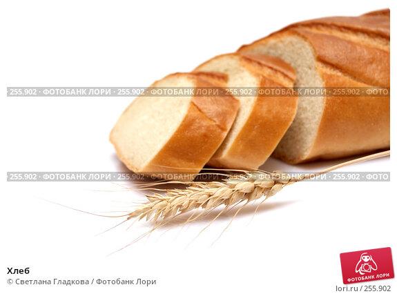 Хлеб, фото № 255902, снято 9 апреля 2008 г. (c) Cветлана Гладкова / Фотобанк Лори