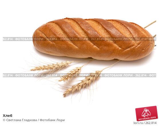 Хлеб, фото № 262814, снято 9 апреля 2008 г. (c) Cветлана Гладкова / Фотобанк Лори