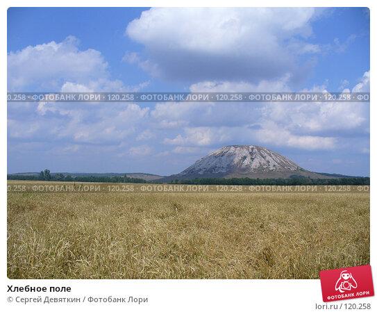 Хлебное поле, фото № 120258, снято 24 августа 2007 г. (c) Сергей Девяткин / Фотобанк Лори