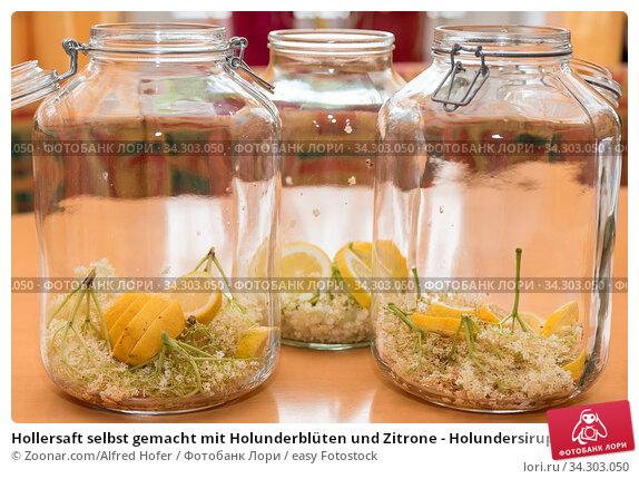 Hollersaft selbst gemacht mit Holunderblüten und Zitrone - Holundersirup. Стоковое фото, фотограф Zoonar.com/Alfred Hofer / easy Fotostock / Фотобанк Лори