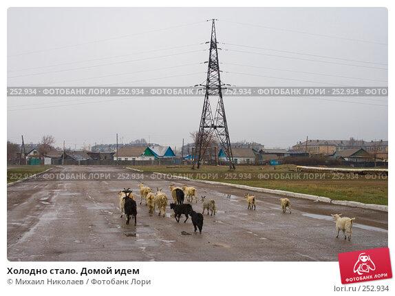 Купить «Холодно стало. Домой идем», фото № 252934, снято 16 апреля 2008 г. (c) Михаил Николаев / Фотобанк Лори