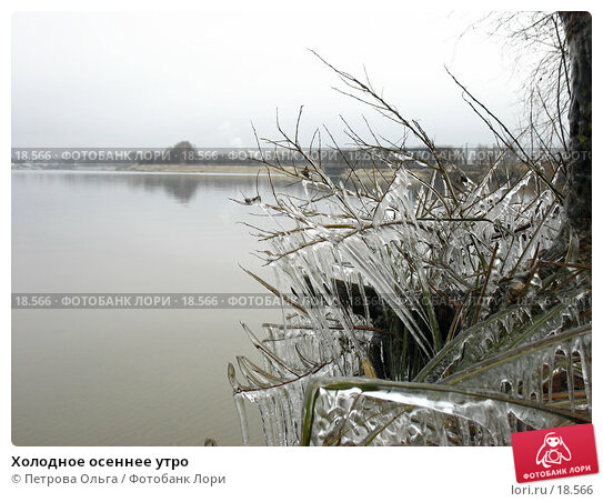 Холодное осеннее утро, фото № 18566, снято 20 ноября 2006 г. (c) Петрова Ольга / Фотобанк Лори