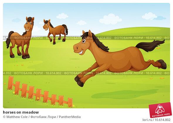 horses on meadow. Стоковая иллюстрация, иллюстратор Matthew Cole / PantherMedia / Фотобанк Лори