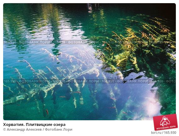 Хорватия. Плитвицкие озера, эксклюзивное фото № 165930, снято 30 апреля 2017 г. (c) Александр Алексеев / Фотобанк Лори