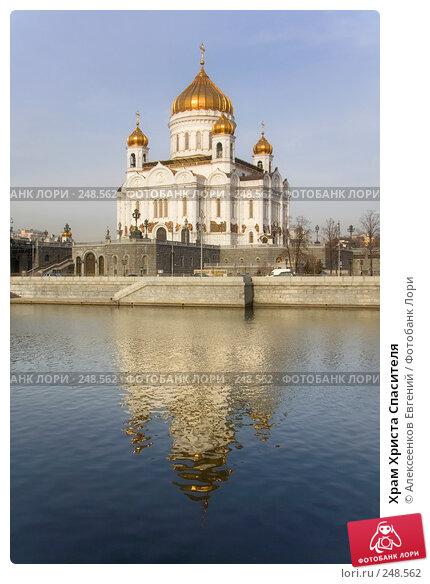 Храм Христа Спасителя, фото № 248562, снято 31 марта 2008 г. (c) Алексеенков Евгений / Фотобанк Лори