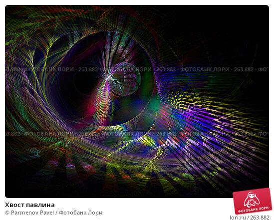 Хвост павлина, иллюстрация № 263882 (c) Parmenov Pavel / Фотобанк Лори