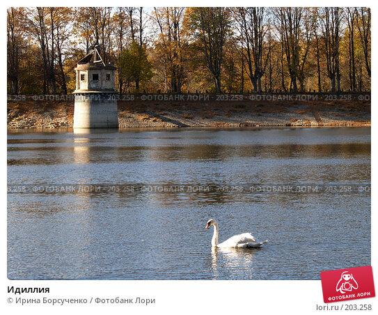 Идиллия, фото № 203258, снято 28 октября 2006 г. (c) Ирина Борсученко / Фотобанк Лори
