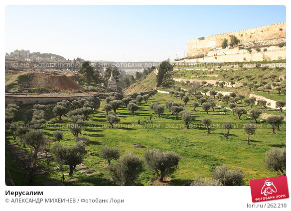 Иерусалим, фото № 262210, снято 22 февраля 2008 г. (c) АЛЕКСАНДР МИХЕИЧЕВ / Фотобанк Лори