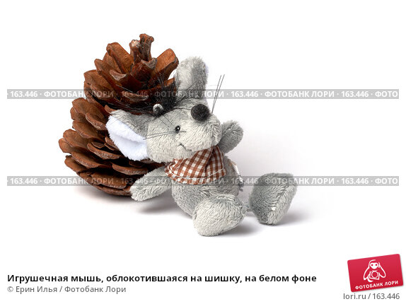 Игрушечная мышь, облокотившаяся на шишку, на белом фоне, фото № 163446, снято 29 декабря 2007 г. (c) Ерин Илья / Фотобанк Лори
