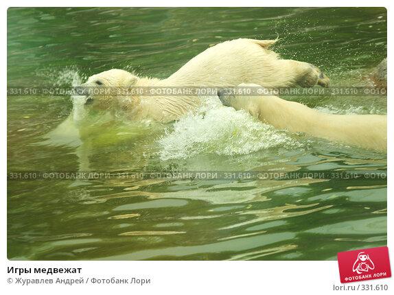 Игры медвежат, эксклюзивное фото № 331610, снято 18 июня 2008 г. (c) Журавлев Андрей / Фотобанк Лори