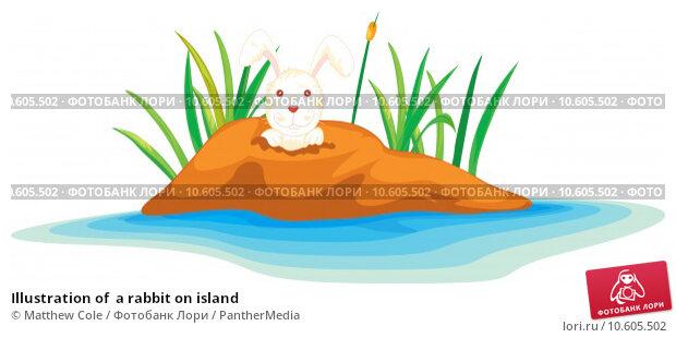 Illustration of  a rabbit on island . Стоковая иллюстрация, иллюстратор Matthew Cole / PantherMedia / Фотобанк Лори