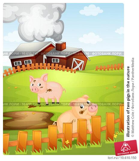 illustration of two pigs in the nature. Стоковая иллюстрация, иллюстратор Matthew Cole / PantherMedia / Фотобанк Лори