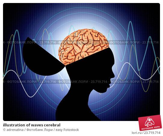 Купить «illustration of waves cerebral», фото № 23719714, снято 7 октября 2014 г. (c) easy Fotostock / Фотобанк Лори