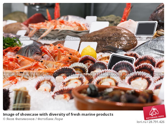Купить «Image of showcase with diversity of fresh marine products», фото № 28791426, снято 26 января 2018 г. (c) Яков Филимонов / Фотобанк Лори