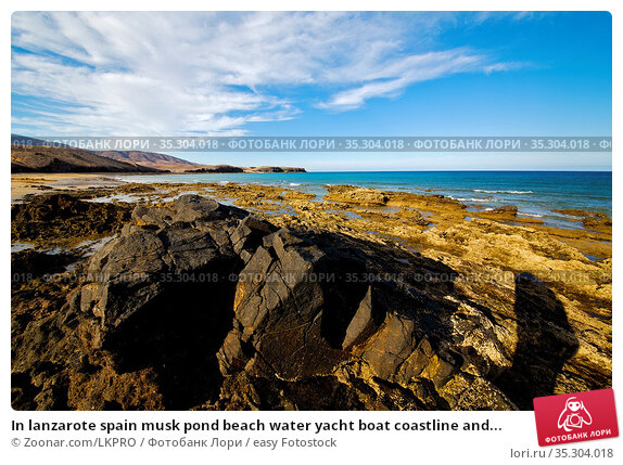 In lanzarote spain musk pond beach water yacht boat coastline and... Стоковое фото, фотограф Zoonar.com/LKPRO / easy Fotostock / Фотобанк Лори