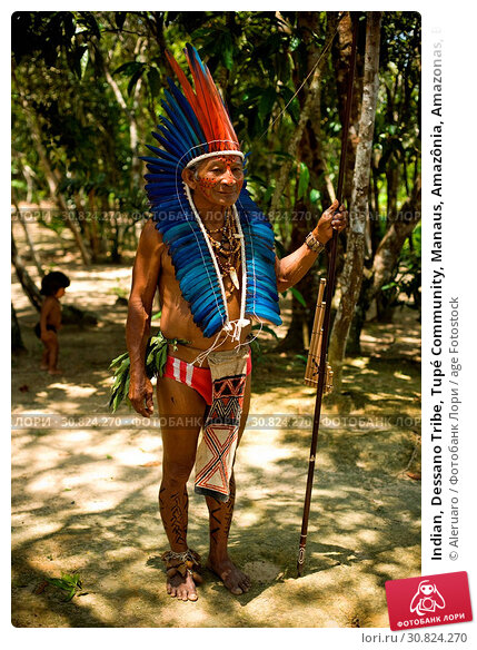 Купить «Indian, Dessano Tribe, Tupé Community, Manaus, Amazônia, Amazonas, Brazil», фото № 30824270, снято 29 сентября 2008 г. (c) age Fotostock / Фотобанк Лори
