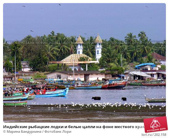 Индийские рыбацкие лодки и белые цапли на фоне местного храма, фото № 202158, снято 12 ноября 2004 г. (c) Марина Бандуркина / Фотобанк Лори